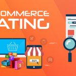 ecommerce seo services magentoguys