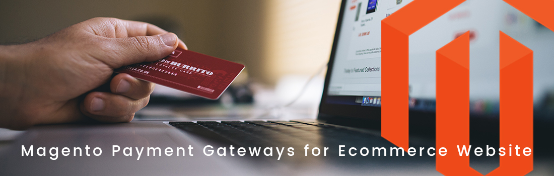 11 Magento Payment Gateways for Ecommerce Website You Should Consider