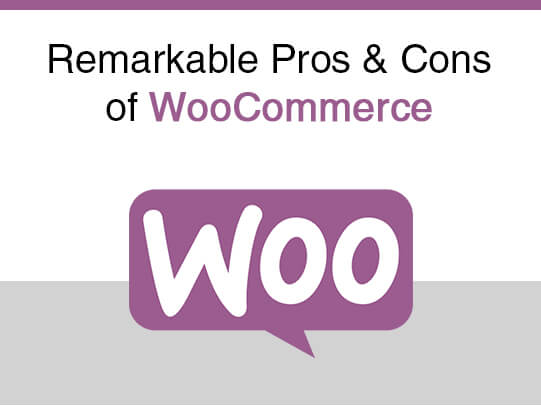 Remarkable Pros & Cons of WooCommerce