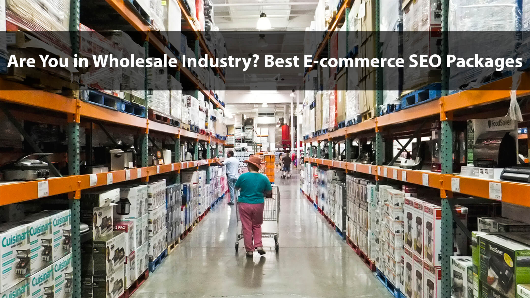 Are you in Wholesale Industry? Best eCommerce SEO Packages