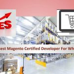 Choose Best Magento Certified Developer For Wholesalers